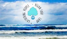 Vegan Surf Camp